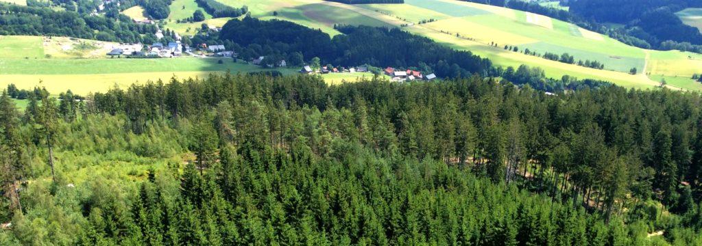 Let balonem Deštné v Orlických horách- vrcholky stromů, pohled do údolí